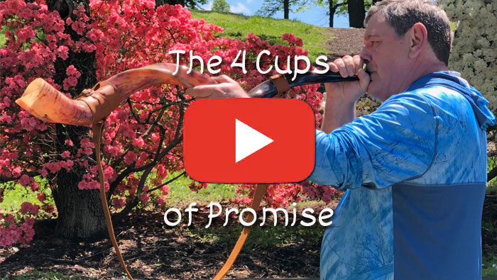 The Four Cups Of Promise - YouTube Video